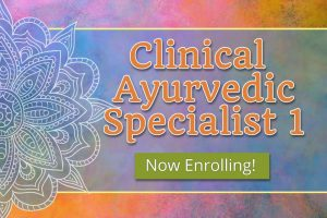 Clinical Ayurvedic Specialist 1 – Winter (Weekend)