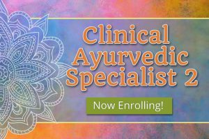Clinical Ayurvedic Specialist 2 – Spring (Full-Time)