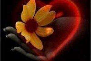 Yoga Nidra Graceful Transitions Add-On