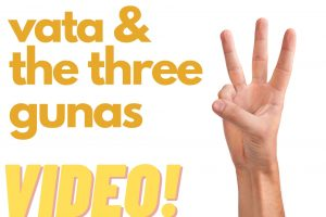 Vata and The Three Gunas: 10 Minutes with Dr. Halpern